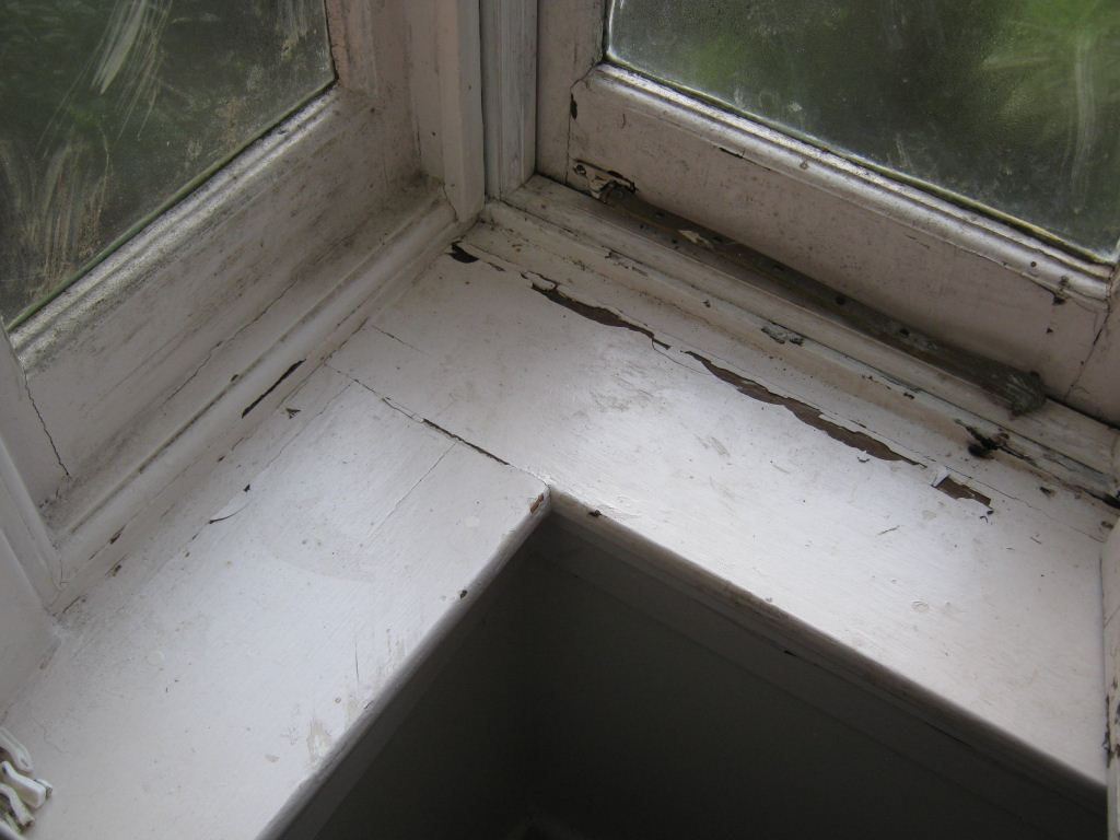 Dampness Causing Mould And Flaking Paint - prevent mould